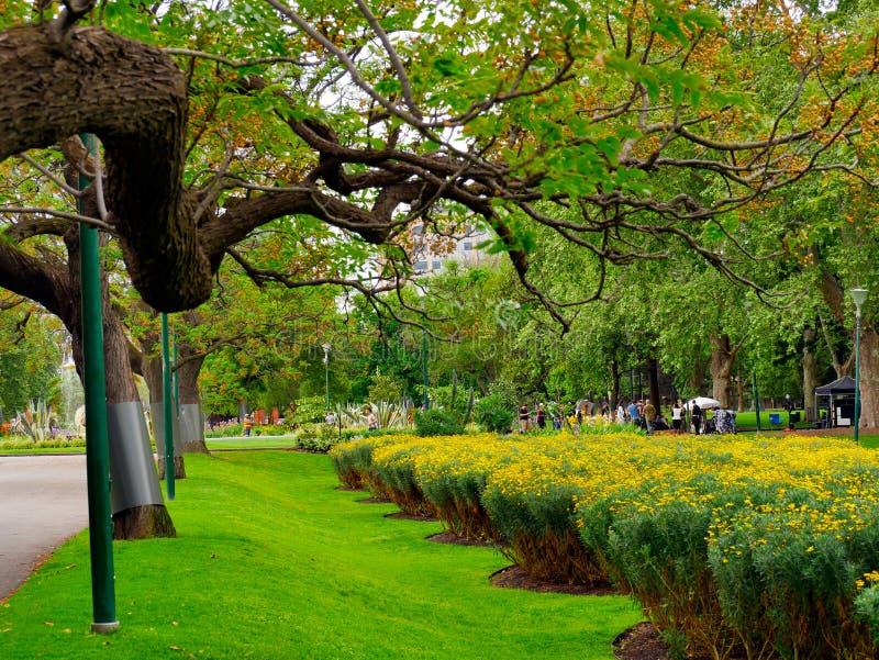 Förtjusande fridsamt landskap av Fitzroy trädgårdar i Melbourne royaltyfri foto