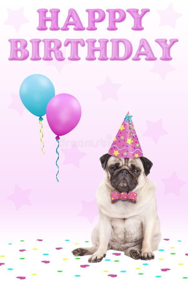 Förtjusande gullig vresig vänd mot mopsvalphund med lycklig födelsedag för för för för partihatt, ballonger, konfettier och text, fotografering för bildbyråer