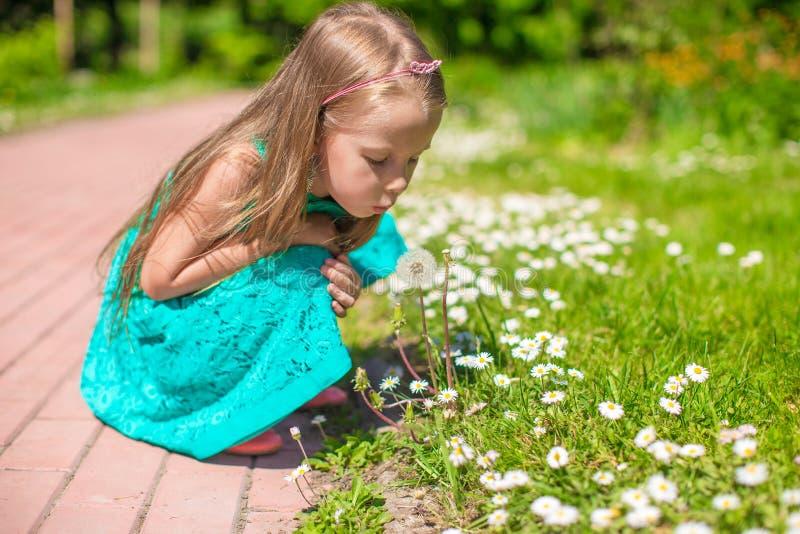 Förtjusande liten flicka som blåser en maskros i royaltyfri bild