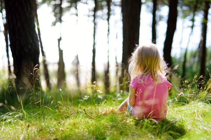 Förtjusande liten flicka som fotvandrar i skogen på sommardag royaltyfria bilder