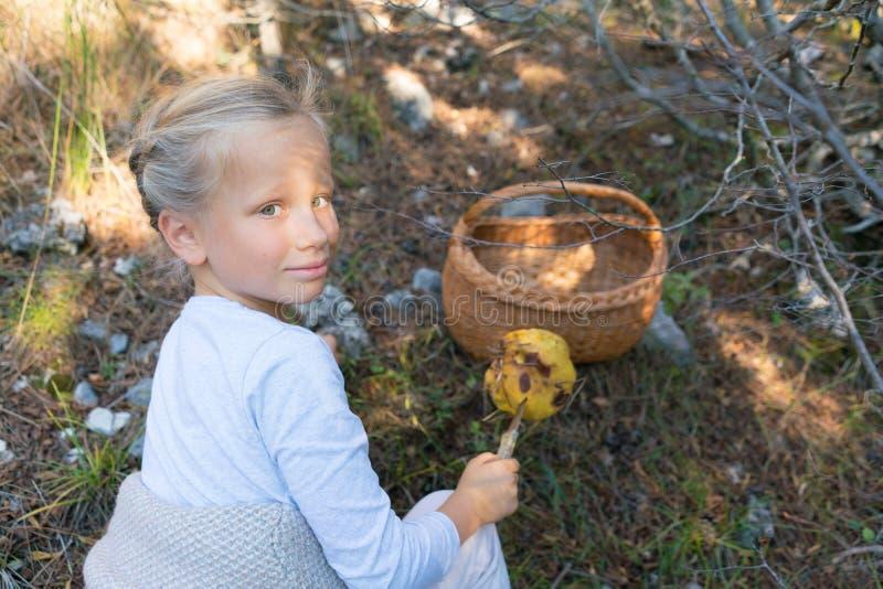 Förtjusande liten flicka som väljer champinjoner i skogen arkivbilder