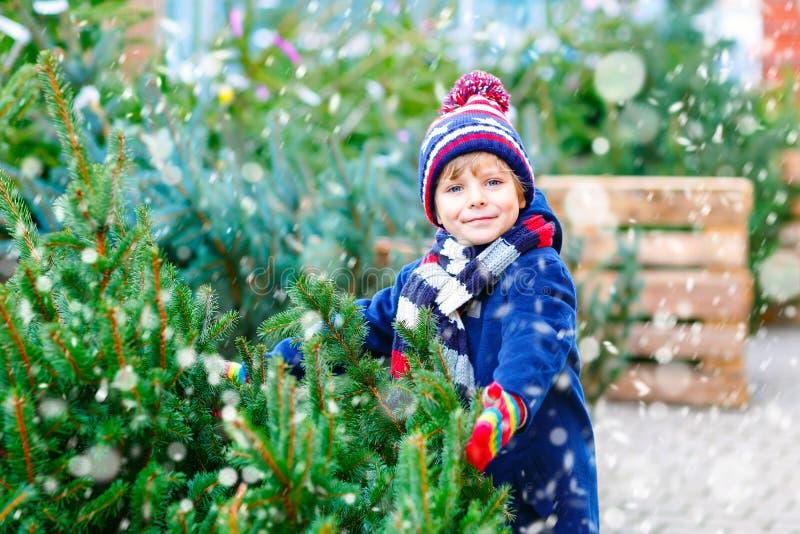 Förtjusande liten le julgran för ungepojkeinnehav på marknad Lyckligt sunt barn i vintermodekläder som väljer royaltyfri fotografi