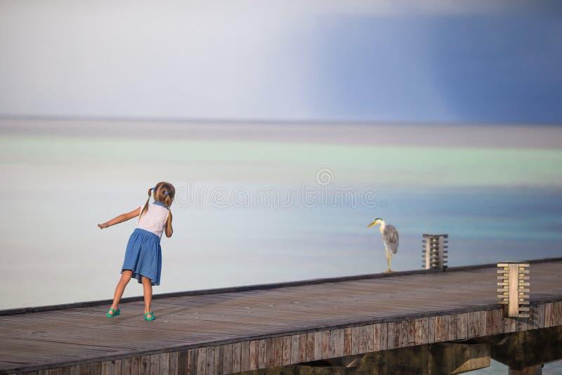 Förtjusande lycklig liten flicka med den gråa hägret på arkivfoton
