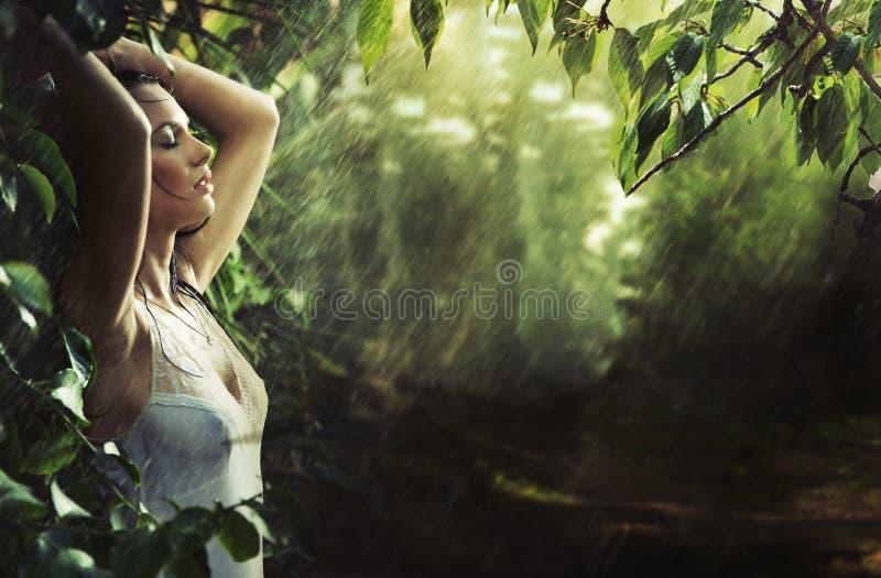 förtjusande sexigt brunettskogregn royaltyfria bilder
