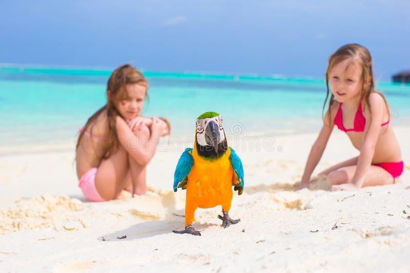 Förtjusande små flickor på stranden med färgrikt arkivfoto