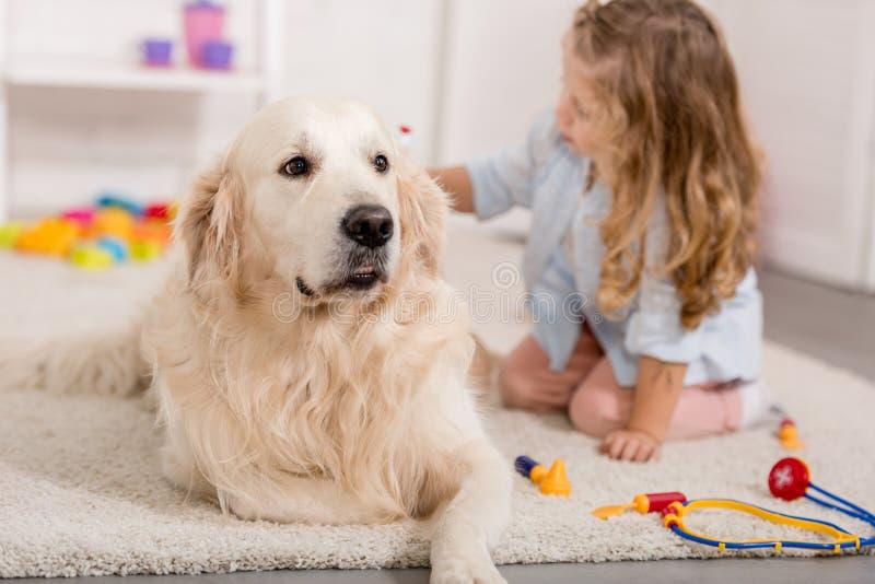 förtjusande unge som låtsar veterinär- och undersökagolden retrieverhund arkivfoto