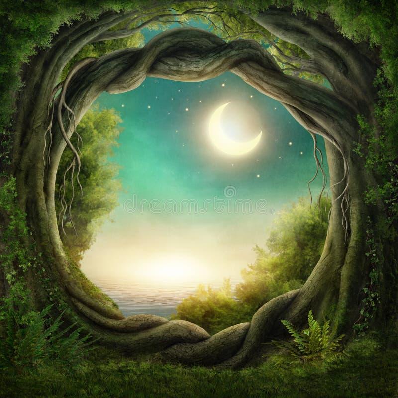 Förtrollad mörk skog royaltyfri illustrationer
