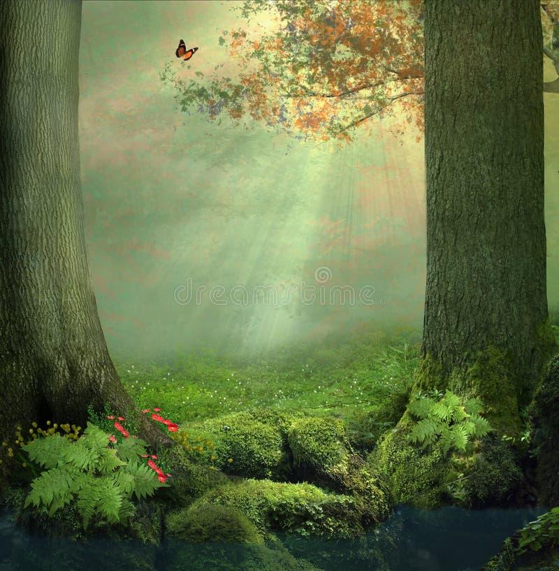 förtrollad skog royaltyfri fotografi