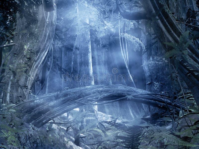 förtrollad skog för bakgrund vektor illustrationer