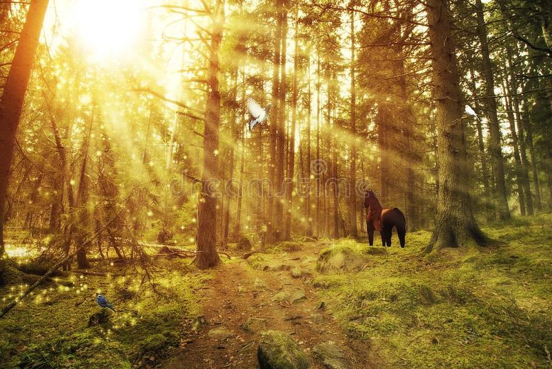 Förtrollad skog med en häst och fåglar royaltyfri illustrationer