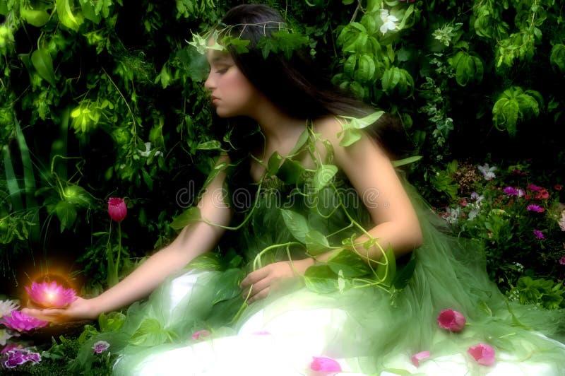 förtrollad trädgård fotografering för bildbyråer