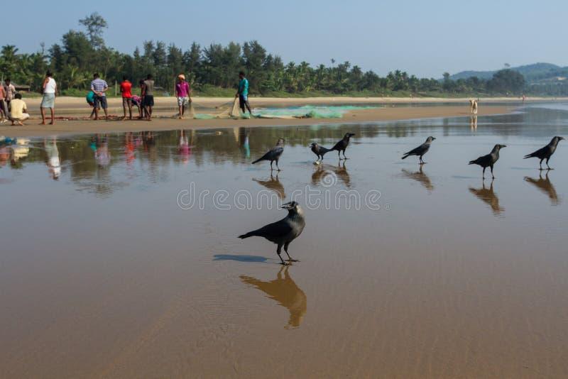 förväntan Galanden som väntar på returen av fiskare fotografering för bildbyråer