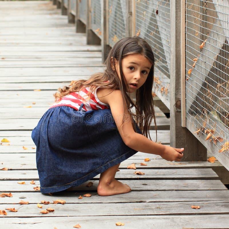 Förvånad flicka på träbron royaltyfria foton