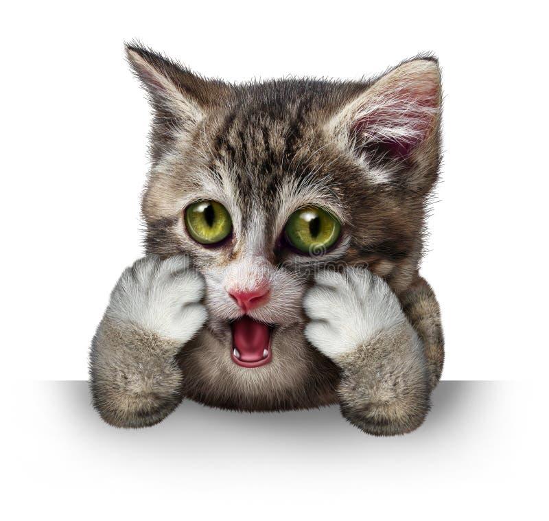 förvånad katt royaltyfri illustrationer