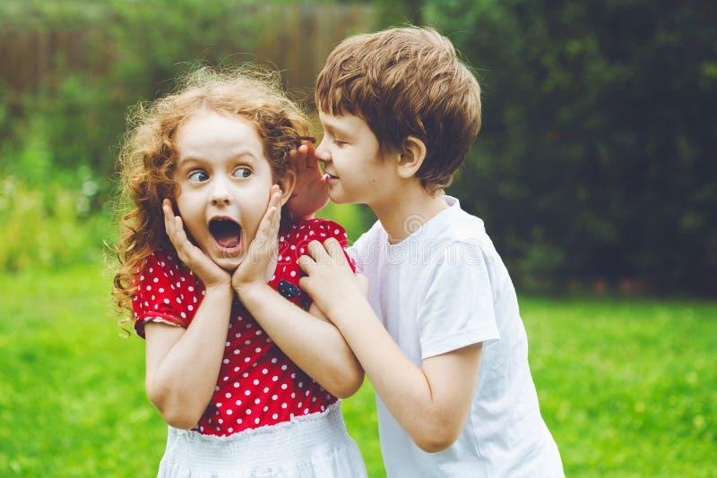 Förvånad liten flicka och pojke som talar med viskning royaltyfri foto