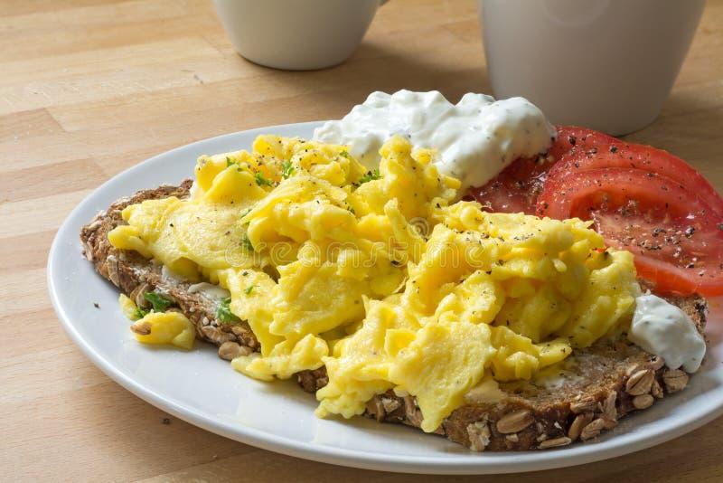 Förvanskade ägg på lantligt bröd med tomater och brysk ostcre royaltyfria bilder
