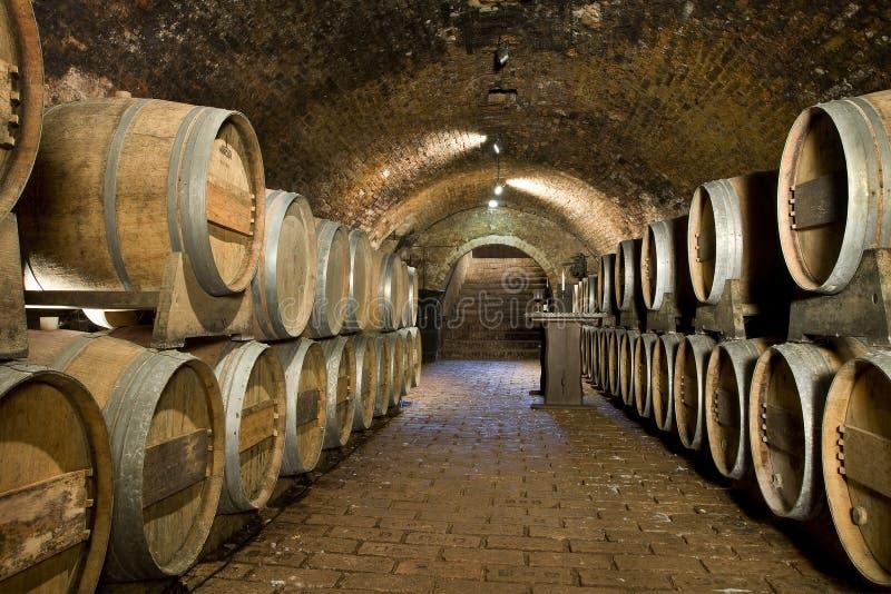 förvara i källare wine royaltyfria foton