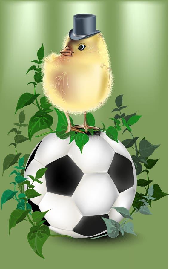 Fútbol con el fondo y el pollo verdes stock de ilustración