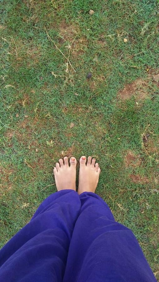 Füße auf grünem Gras lizenzfreies stockfoto