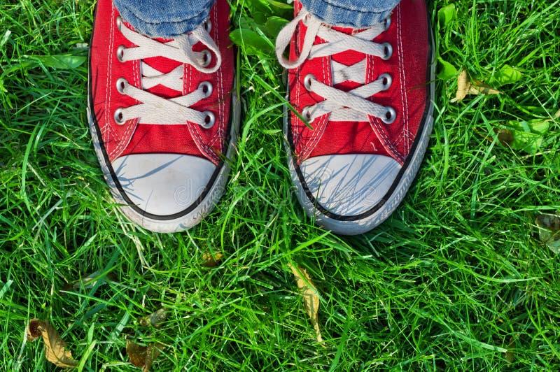 Füße in den Turnschuhen im grünen Gras lizenzfreie stockfotos