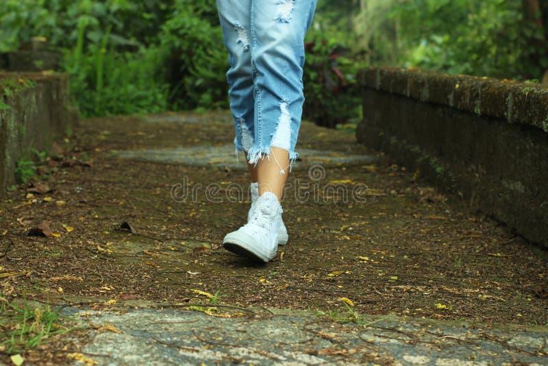 Füße des gehenden Umgebens der jungen Frau mit neuem grünem Naturhintergrund im Waldmenschlichen Körperteil begrifflich mit Kopie stockfoto