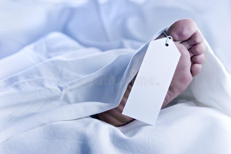 Füße einer Leiche, Umbau-Nr., Nahaufnahme in den weißen Blättern lizenzfreies stockbild
