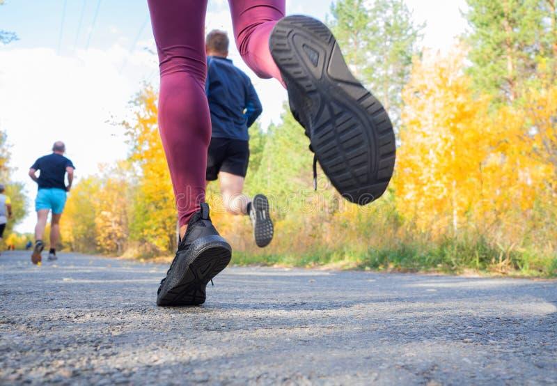 Füße eines Joggers Frauen laufen im Wald Nahaufnahme der Turnschuhe lizenzfreie stockfotografie
