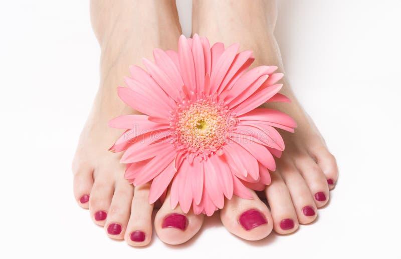 Füße mit rosafarbener Maniküre und Blume stockfotografie