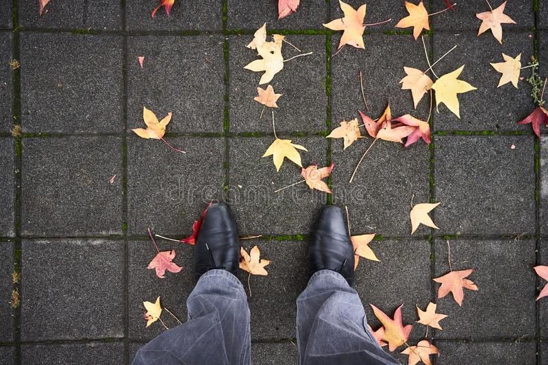 Füße und Laub lizenzfreies stockfoto
