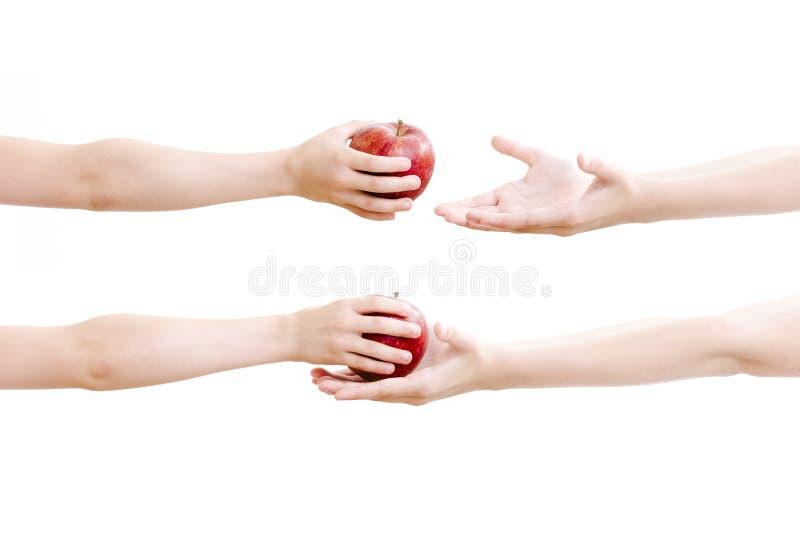 Führen des Apfels stockfotos