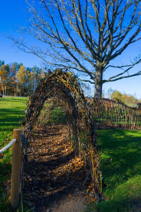Führen Sie Tunnel von den Zweigen, Stangen stockfotografie