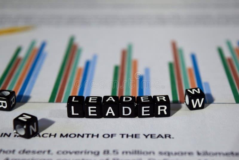 Führer auf Holzklötzen Führungs-Leiter Team Partnership Concept stockbild