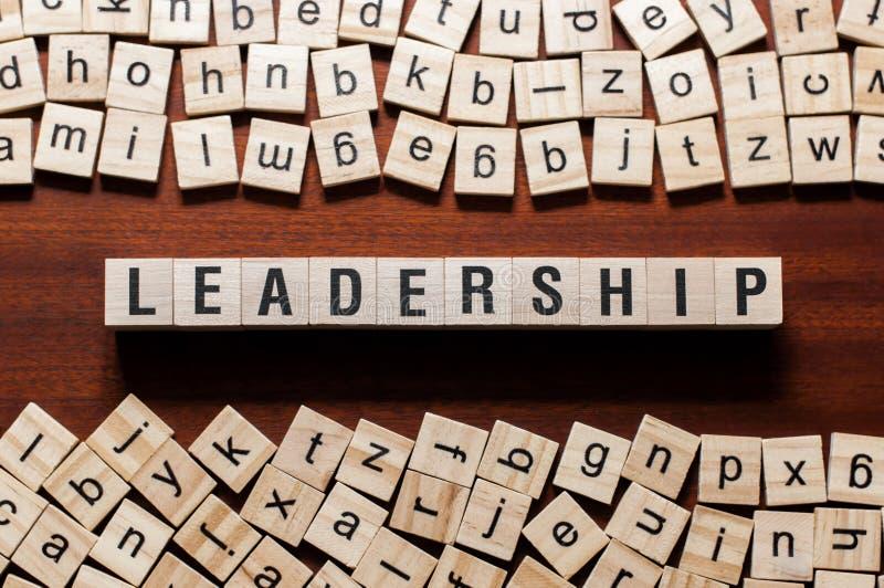 Führungswortkonzept auf Würfeln stockfoto