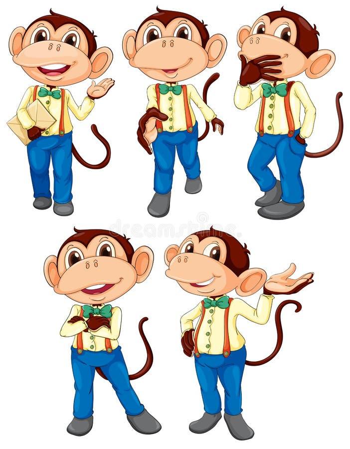 Fünf Affen, die Blue Jeans tragen lizenzfreie abbildung