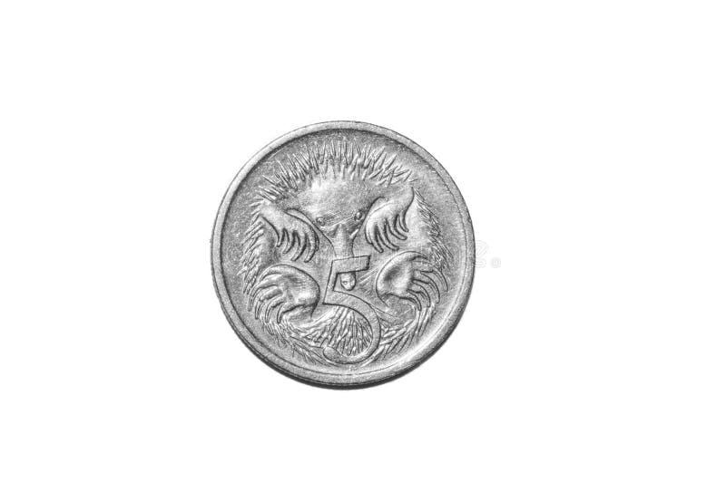 Fünf-australischer Cent-Münze lokalisiert stockfotografie