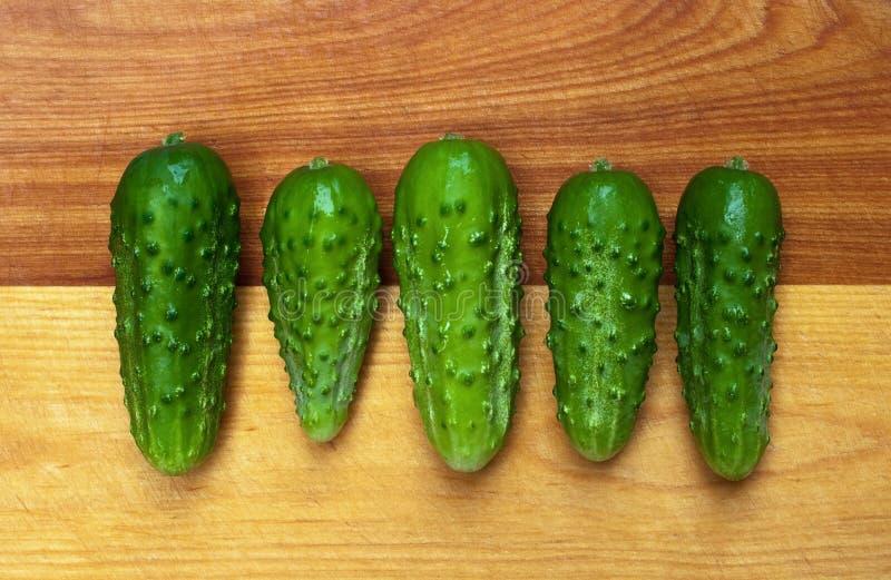 Fünf Essiggurken in Folge lizenzfreie stockfotografie