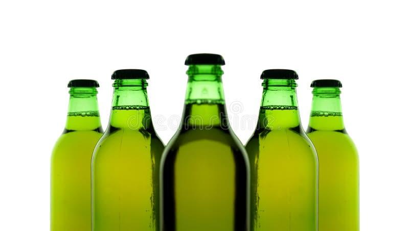 Fünf Flaschen Bier stockbild