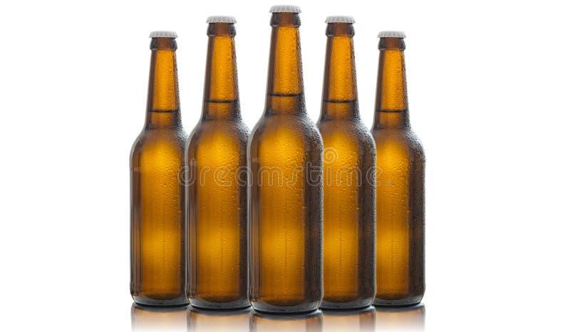 Fünf Glasbierflaschen lokalisiert auf weißem Hintergrund stockbilder