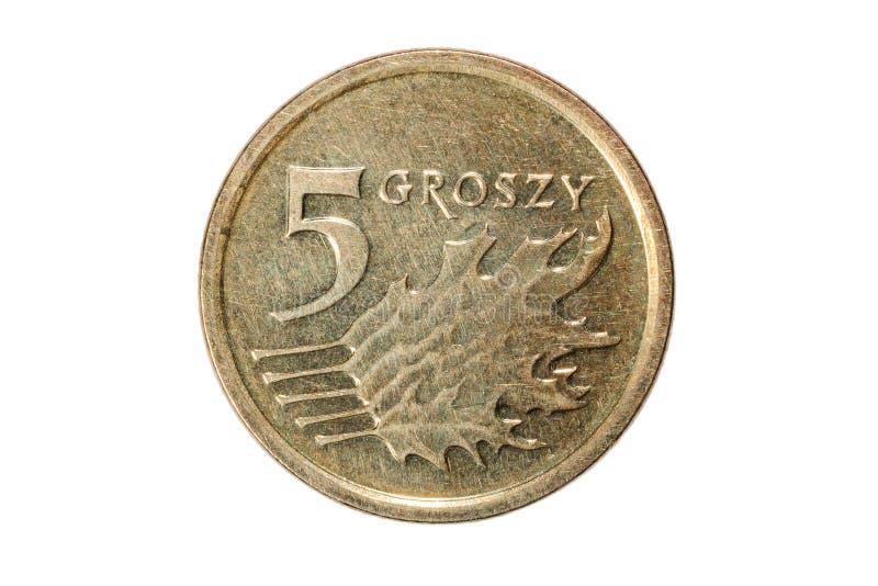 Fünf Groszy Polnischer Zloty Die Währung von Polen Makrofoto einer Münze Polen stellt eine Fünf-Politur Groszymünze dar lizenzfreies stockbild