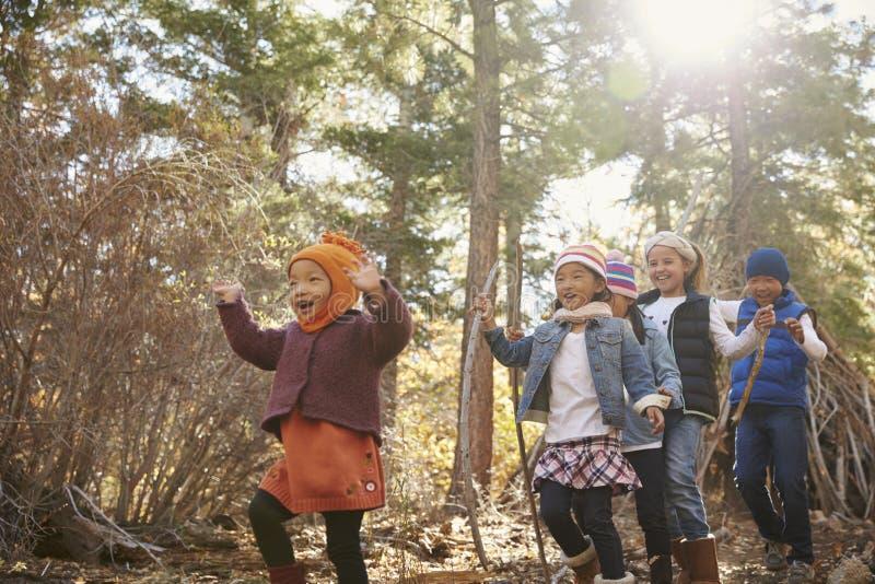 Fünf Kleinkinder, die zusammen in einem Wald, niedrige Winkelsicht spielen stockbilder