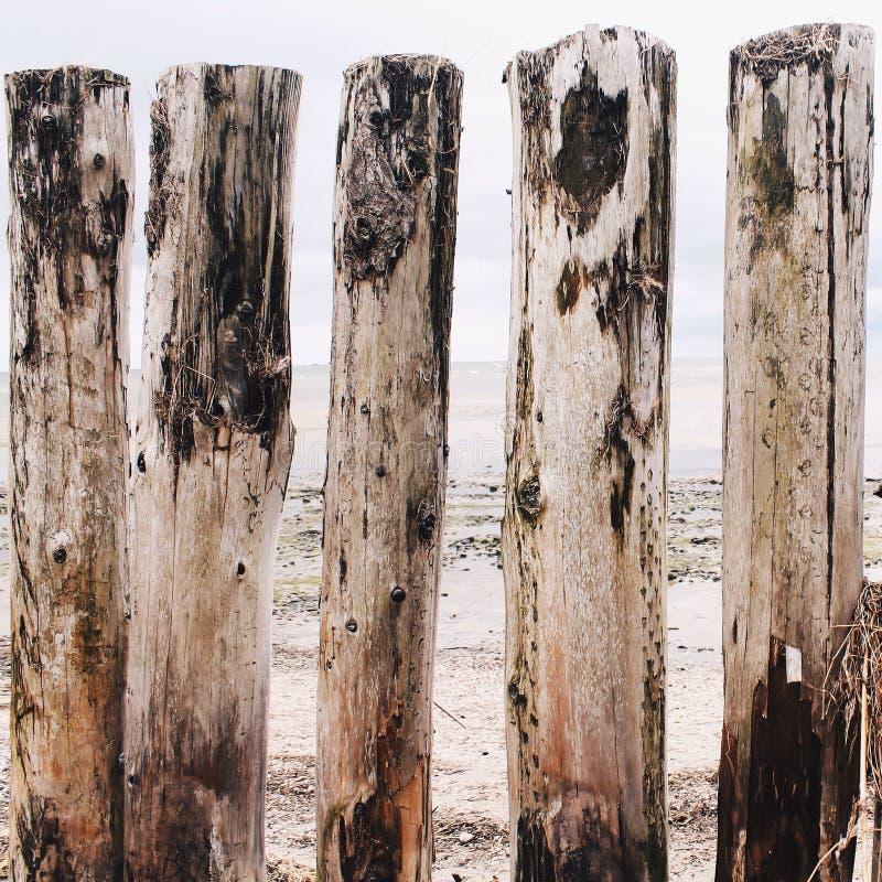 Fünf meldet den Strand an stockfotografie