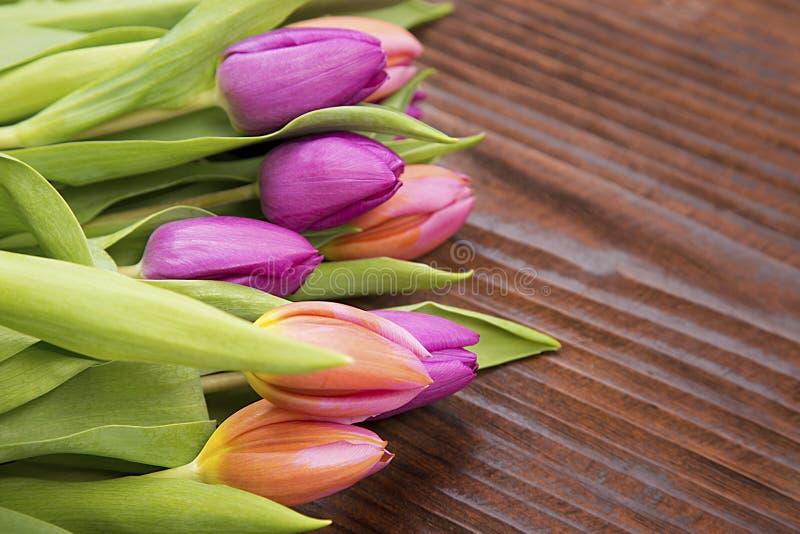 Für Muttertage färbte Tulpen lizenzfreies stockfoto