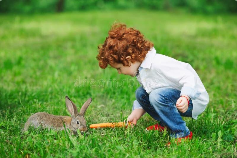 Fütterungskaninchen des Jungen mit Karotte im Park stockbilder