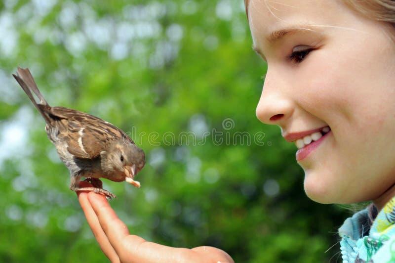 Fütterungsspatz des glücklichen Mädchens stockbild
