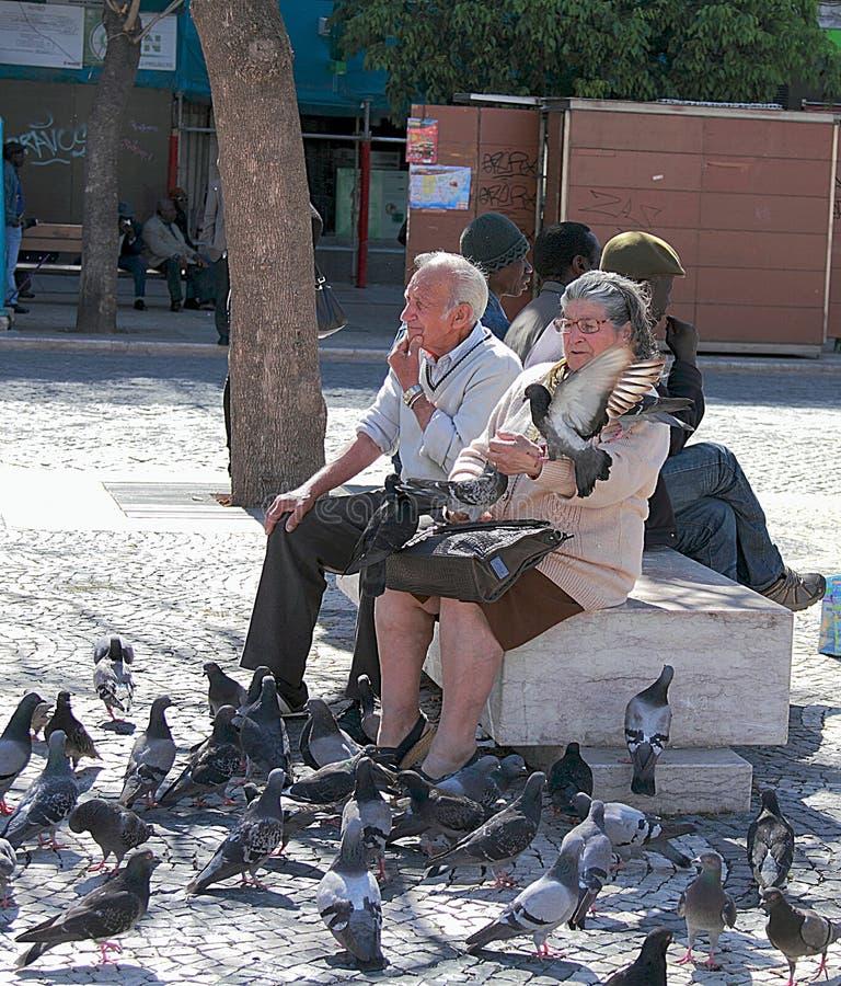 Fütterungstauben der älteren Paare an Rossio-Quadrat in Lissabon lizenzfreie stockfotografie