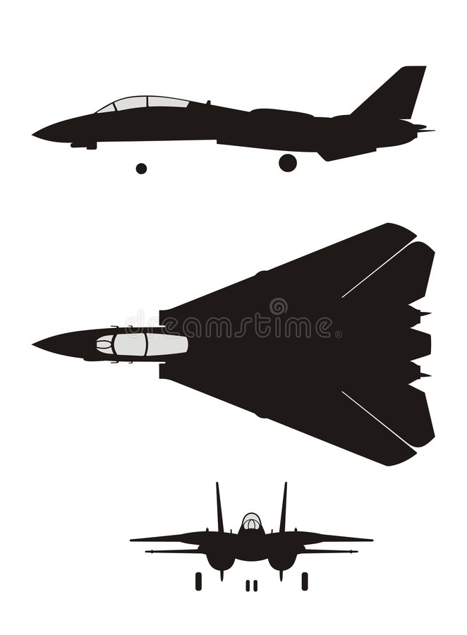 F-14 stock illustratie