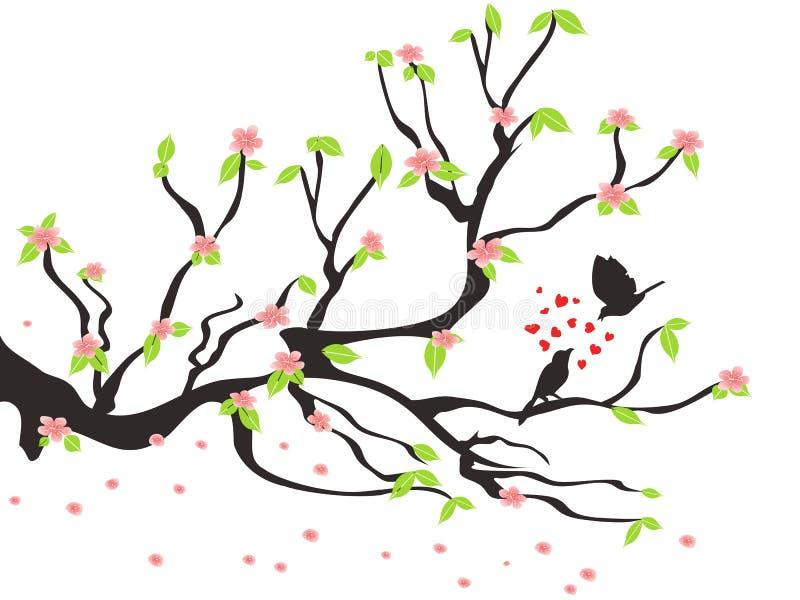 fåglar som älskar plommonfjädertreen vektor illustrationer