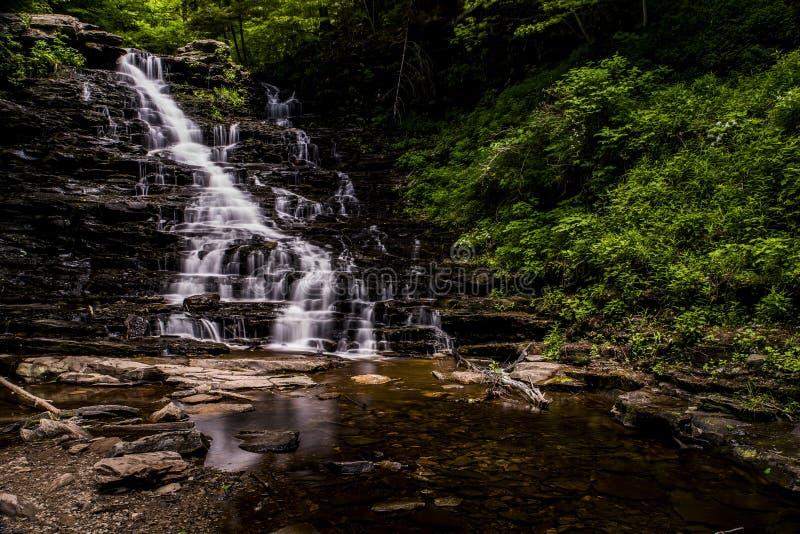 f L Ricketts понижается - парк штата Ricketts Глена - Пенсильвания стоковая фотография rf