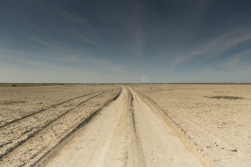 F?ljder av den Aral havskatastrofen Sandig salt ?ken p? st?llet av gamlabotten av det Aral havet arkivfoton