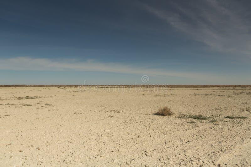 F?ljder av den Aral havskatastrofen Sandig salt ?ken p? st?llet av gamlabotten av det Aral havet arkivbilder